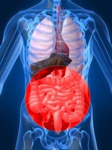 clinique_alain_bernard_systeme_digestif