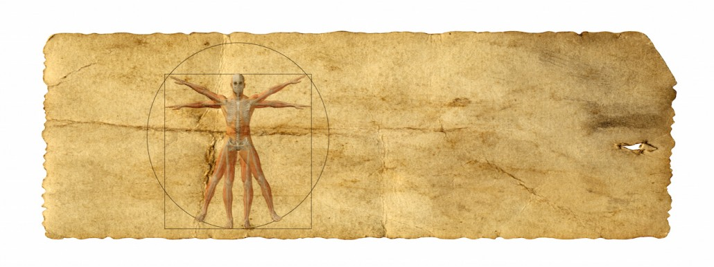 Anatomie Clinique acupuncture médecine chinoise alain bernard